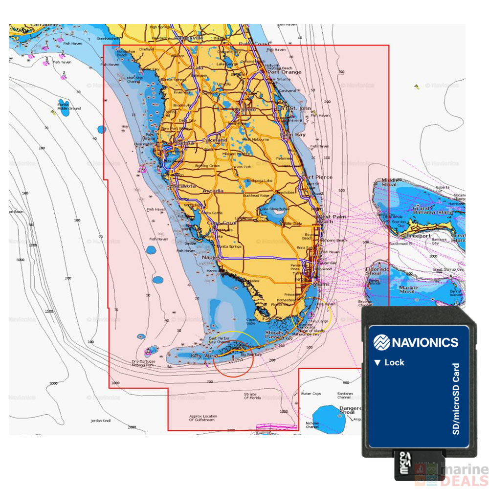 Navionics Platinum Plus SD/MSD Chart Card Central and South Florida