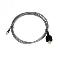 Raymarine SeaTalk2 Plug to Wire Cable 10m