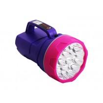 19 LED Handheld Spotlight/Torch